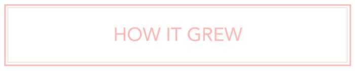 how it grew entrepreneurial stories on LadyBossBlogger.com